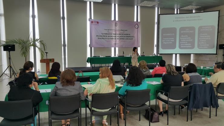 La Dra. Dora Ayora Talavera impartiendo curso a Jueces y Magistrados